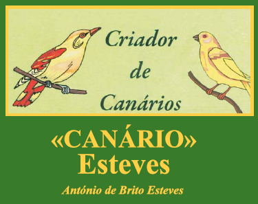 Canário Esteves