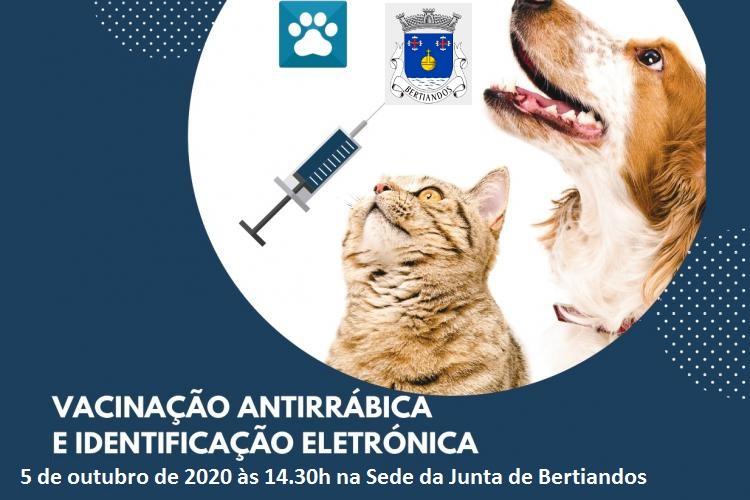 Vacinação Anti-Rábica 2020
